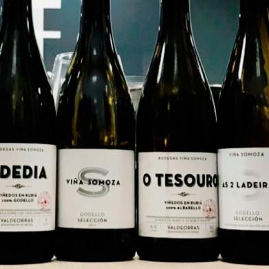 Nuevos vinos llegan a Viña Somoza