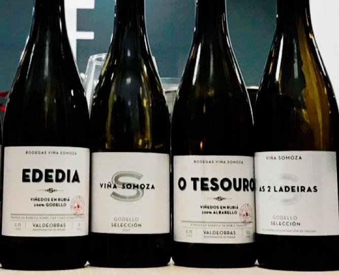nuevos vinos de la bodega