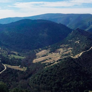 Dos motivos para visitar Valdeorras